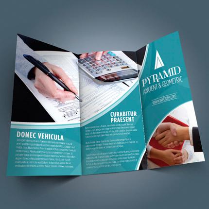 Printed Tri-Fold Flyer